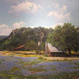 Bluebonnet Landscape frontpage